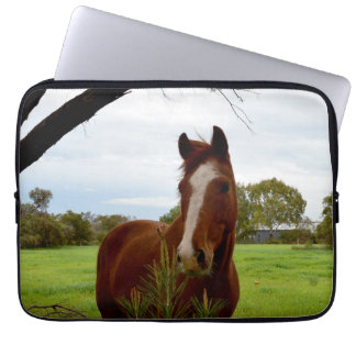 Horse_Sniff_13inch_Laptop_Sleeve Laptop Computer Sleeve