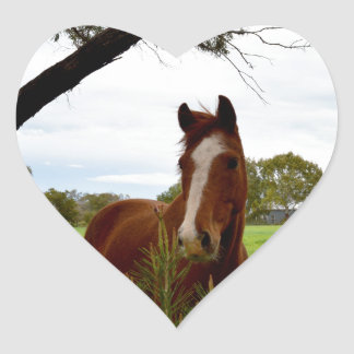 Horse_Sniffing_A_Bush,_Heart_Stickers Heart Sticker