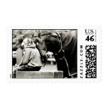 Horse Snuggles Postage Stamps