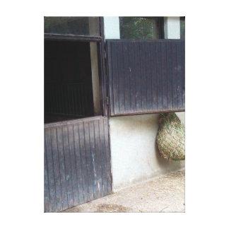 Horse Stable Door Canvas Print