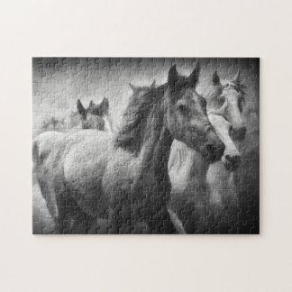 Horse Stampede Puzzle