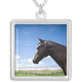 Horse standing at fence in pasture custom jewelry