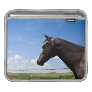 Horse standing at fence in pasture sleeve for iPads