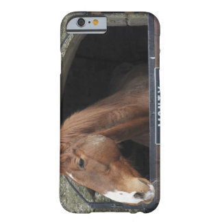 Horse standing looking out of its stable barely there iPhone 6 case