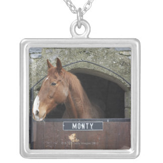 Horse standing looking out of its stable silver plated necklace