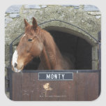 Horse standing looking out of its stable square sticker