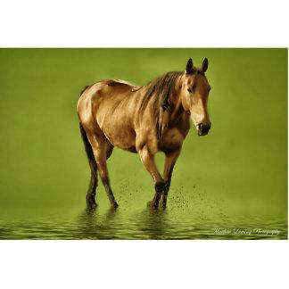 horse standing photo sculpture
