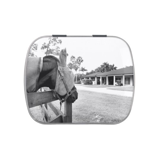 horse staring at barn bw c.jpg jelly belly tin