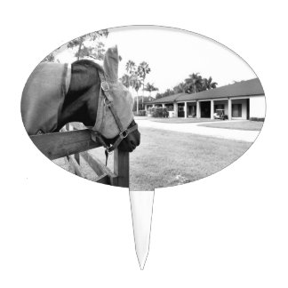 horse staring at barn bw cake topper