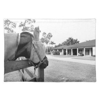 horse staring at barn bw placemat