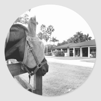 horse staring at barn bw round stickers