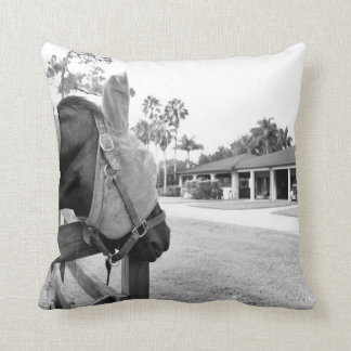 horse staring at barn bw throw pillow