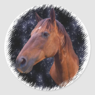 Horse stars classic round sticker