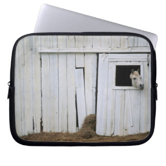 Horse Sticking Head out Barn Window Laptop Sleeve