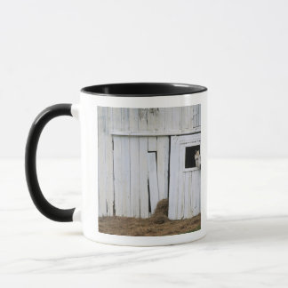 Horse Sticking Head out Barn Window Mug