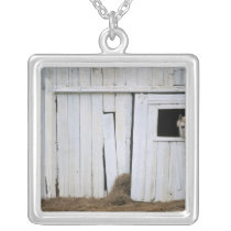 Horse Sticking Head out Barn Window Silver Plated Necklace