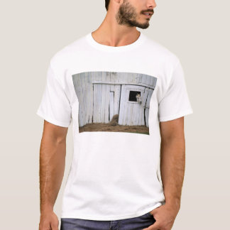Horse Sticking Head out Barn Window T-Shirt