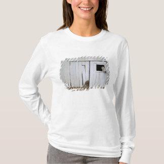 Horse Sticking Head out Barn Window T-Shirt