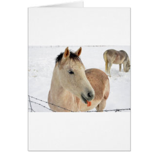 Horse Sticking Tongue Out at Camera! Greeting Card