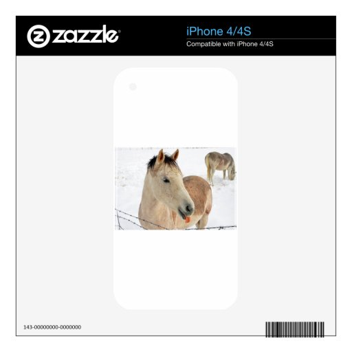 Horse Sticking Tongue Out at Camera! Skins For iPhone 4