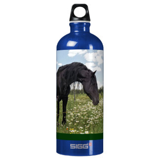 Horse Stretch Aluminum Water Bottle