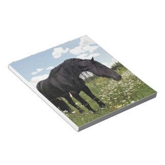 Horse Stretch Scratch Pad