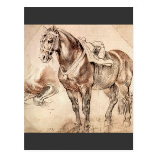 Horse studies by Paul Rubens Post Cards