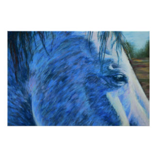 Horse Study in Blue Poster