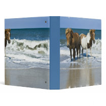Horse Swim Binder