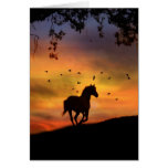 Horse Sympathy Card Cards