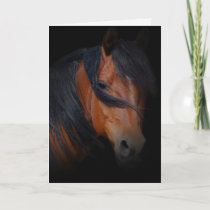 Horse Sympathy Card for Loss of Horse