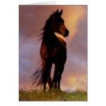 Horse Sympathy Card Greeting Card