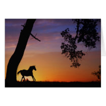 Horse Sympathy Card Spirit of the Horse