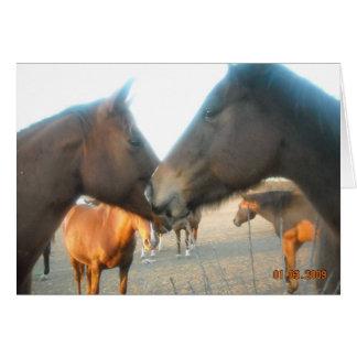 Horse tete a tete card