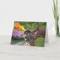 Horse Thanksgiving Holiday Card