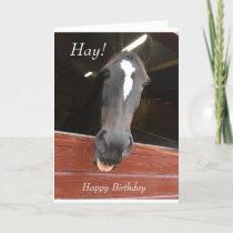 horse themed birthday card