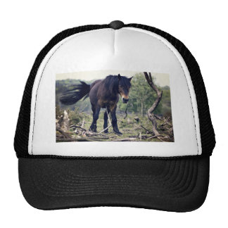 Horse Themed, Black Wild Pony Horse  In Its Action Trucker Hat