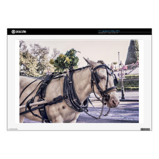 Horse Themed, Wagon White Horse Look Pensively In Laptop Decal