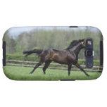 Horse Thoroughbreds, Wassl 1988, Samsung Galaxy SIII Cases