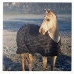 horse tiles