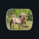 """Horse tin<br><div class=""""desc"""">See my store for more horse items.</div>"""