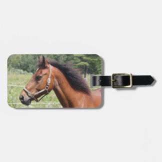 Horse Travel Bag Tags