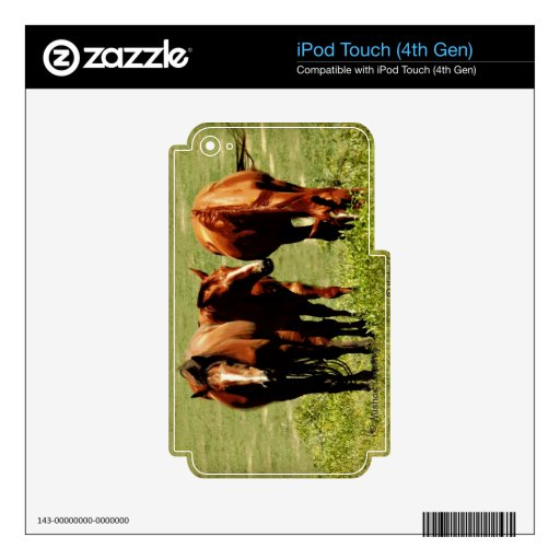 Horse Trio Decal For iPod Touch 4G