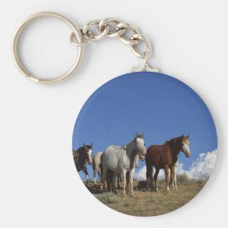 Horse Trio Key Chain