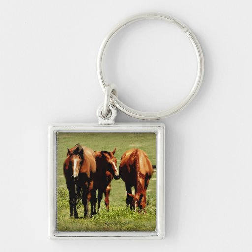 Horse Trio Keychains