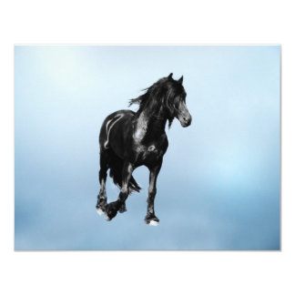 Horse turning suddenly card