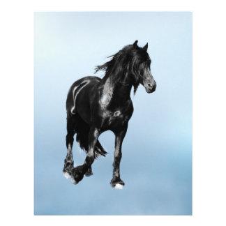 Horse turning suddenly flyer