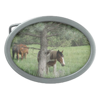 Horse under tree belt buckle