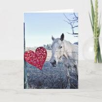 HORSE Valentine heart Holiday Card
