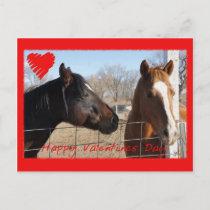 Horse Valentine VI Holiday Postcard